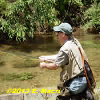 Fly Rod Selection: Why Fly Anglers Buy the Wrong fly rod at www.flyfisher.com