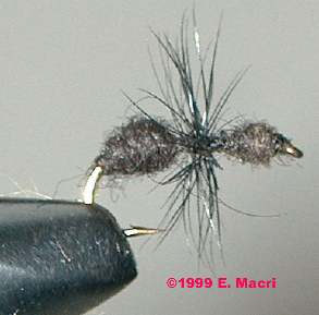 Fly Fishing: Black Fur Ant