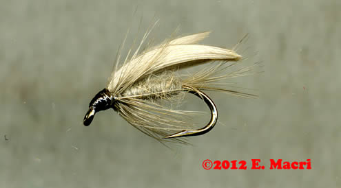 Hares Ear Gold Ribbed Wet Fly from www.flyfishing.com which is one of the most important wet flies. It can be used in a number of different ways for imitation and attractor patterns.