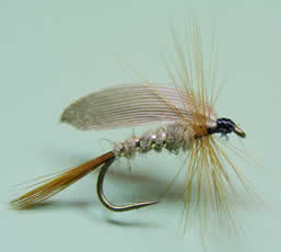 H.E Gold Ribbed Wet Fly; www.flyfisher.com